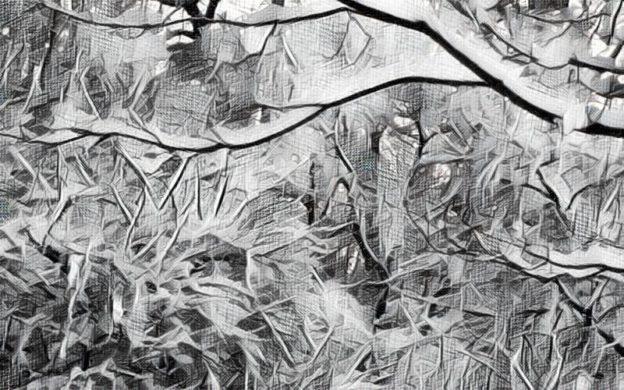 Plum trees covered with snow, Buford, Georgia. (digitally transformed photo, credit: Mark Gresham)